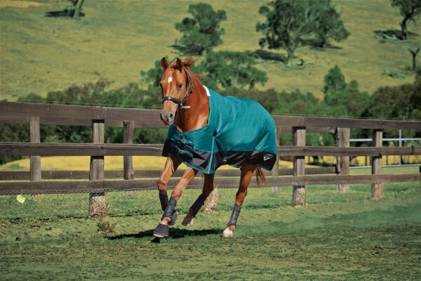608450 Running Saxon 1200D Hunter-Green from Stockdales, horse supply store tennessee