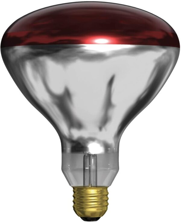 Heat bulb red sold by Stockdales, a garden and farm supply store Tennessee
